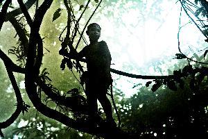 La Jungle des enfants perdus