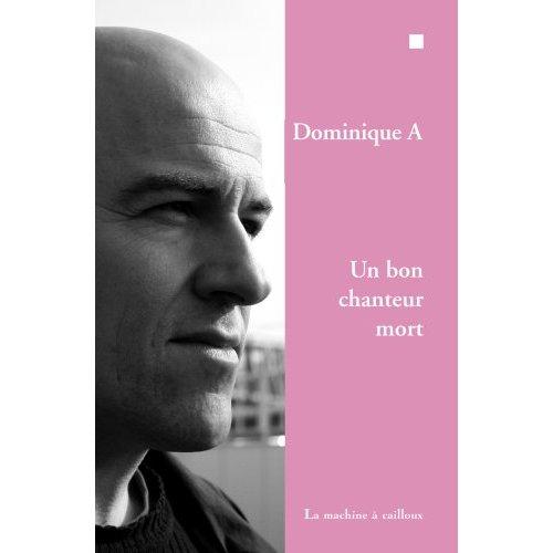 Dominique A Un bon chanteur mort
