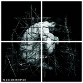 Pascal Mirande « Sentinelles, Icares et Gullivers »