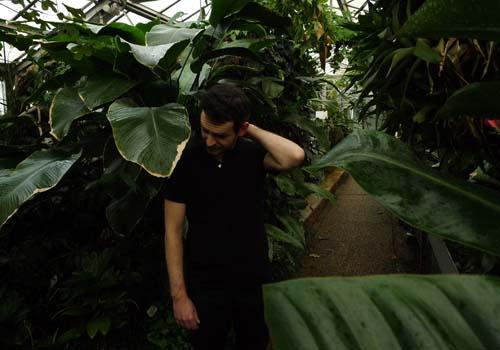 Ivre de la jungle