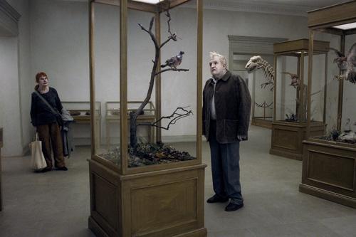 Un pigeon perché sur une branche…