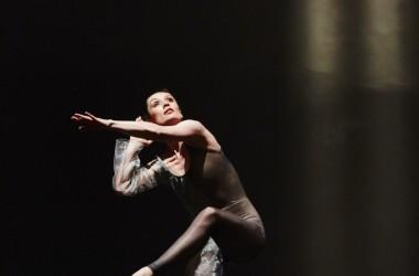 Danse : Cinq spectacles à découvrir