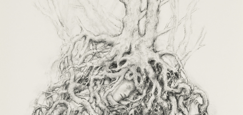 L'ombilic du dessin au Musée d'art moderne et contemporain