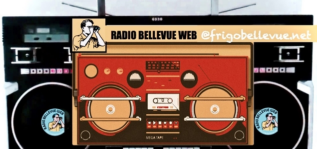 Radio Bellevue Web, start-up de vieux (punks)