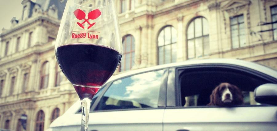 Orgie de vins nus