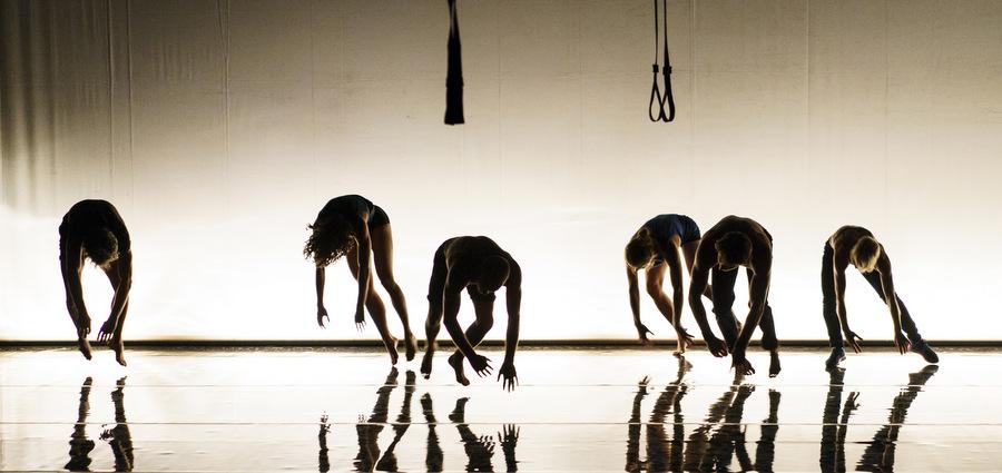 [re]connaissance : danse avec les stars (de demain)