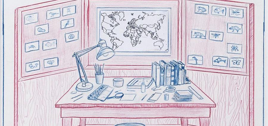 Le monde merveilleux de Mark Dion