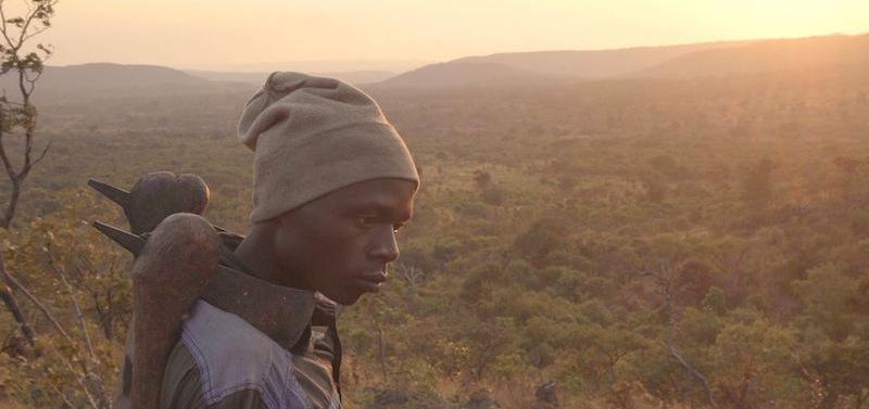 Le documentaire de retour au Toboggan !