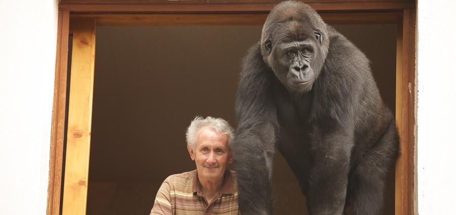 Pierre Thivillon : pour l'amour des animaux