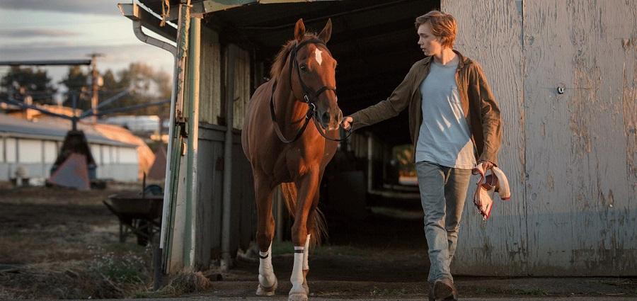 Sans pitié pour le cheval :