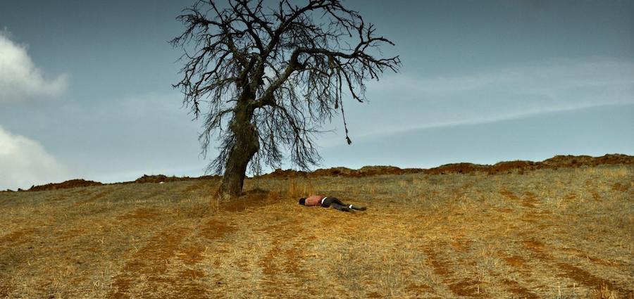 L'arbre, le père et le puits :