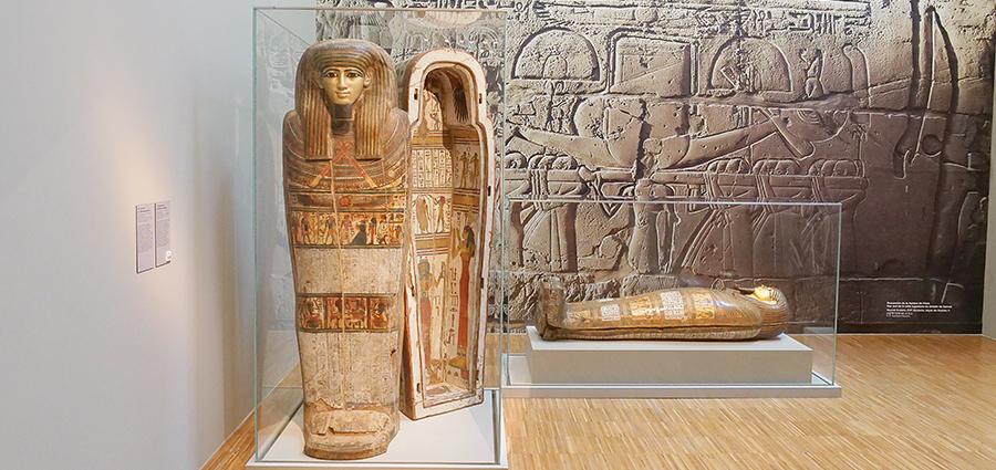 « Ça fait longtemps que je n'ai pas vu une exposition d'art égyptien de cette ampleur et de cette qualité ! »