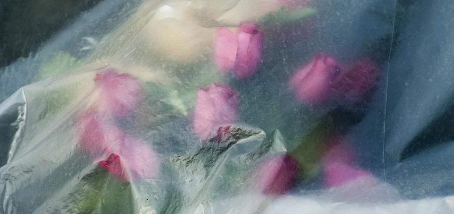 Floraison funèbre par Joseph Caprio