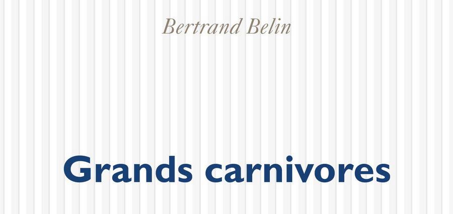Bertrand Belin : le livre de la jungle