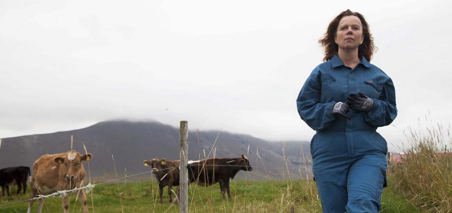Petite paysanne islandaise :