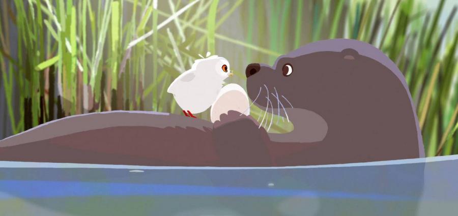 De la chouette animation :