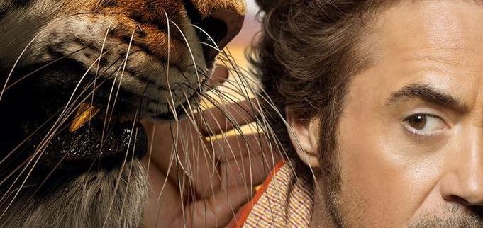 Robert Downey Jr. : « je suis un homme à chats »