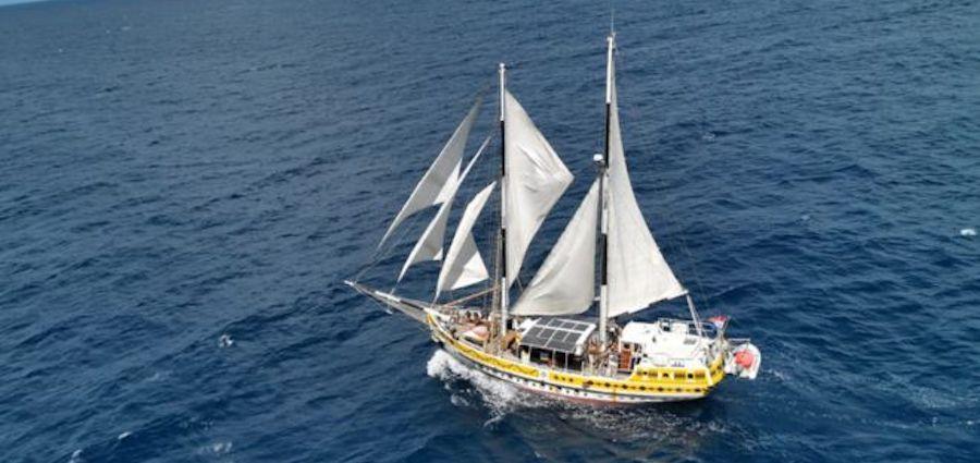 Filastine et l'Arka Kinari, Lost in Pacific