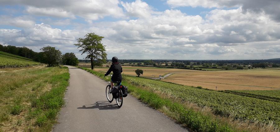 Pédaler en Bourgogne