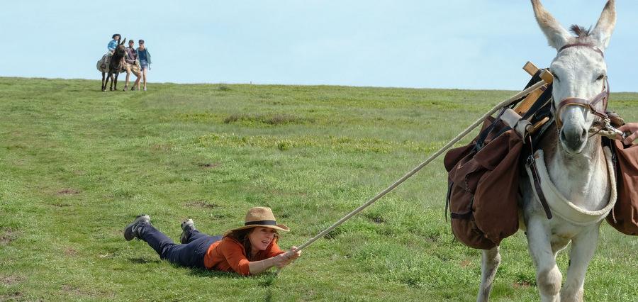 Mariée dans l'ânée :