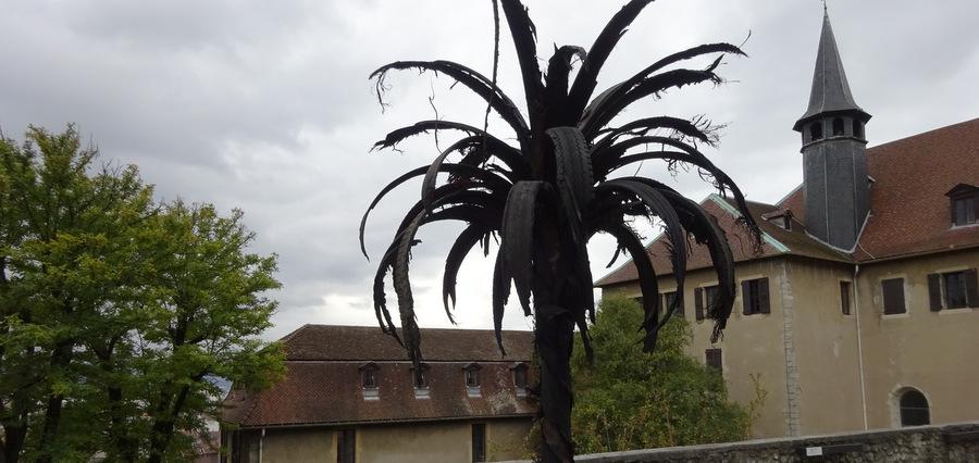 Un palmier au Musée dauphinois grâce à l'artiste Douglas White
