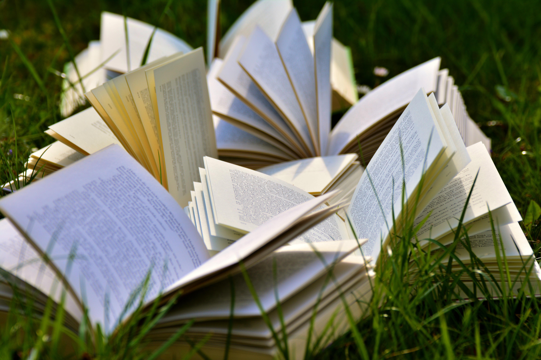 La lecture et autres plaisirs