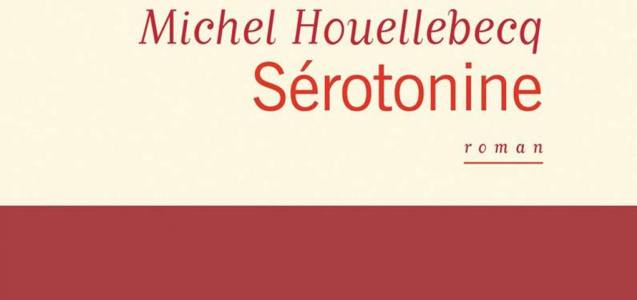 Houellebecq, Sérotonine : portrait d'une France en dépression.